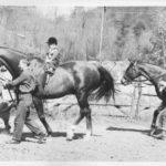 cildrens Horse Show(1)